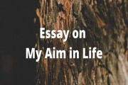 Essay on My Aim in Life or My Ambition in Life