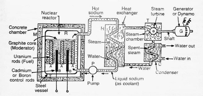 diagram of nuclear reactor - Nuclear Reactor- Construction, Working and Uses