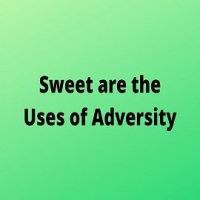 """Essay on """"Sweet are the Uses of Adversity"""""""