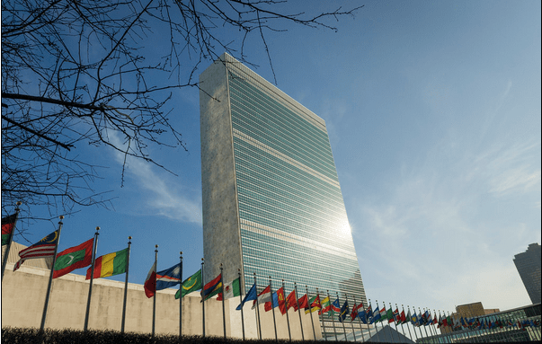 The United Nations' Institutional Racism