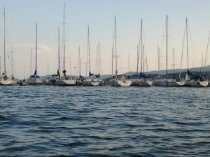 Sail Boats at Flathead Valley Lake Montana