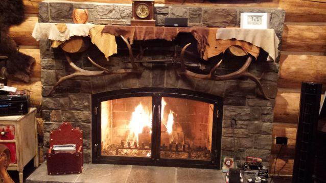 yodel-dog-fireplace