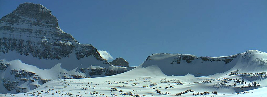 Webcam view of Logan Pass in Glacier National Park