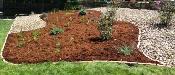 boulder-colorado-landscaping-img 3208