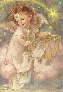 Ängel bur duvor