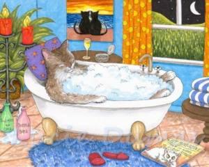 Katt badkar