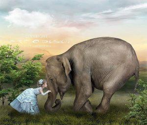 Elefant flicka