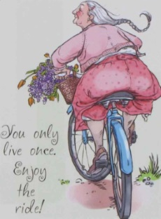 Njut resa cykel