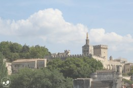 Avignon-17