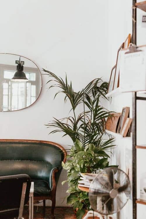 Studio interior, interior design, piante all'interno, vasi all'aperto,. Piante Da Appartamento 8 Idee Per La Tua Casa Glamcasamagazine