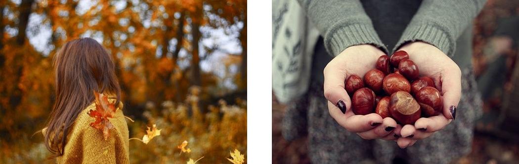 automne-inspiration06