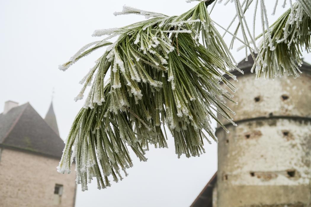 L'Anti Nouvel An ? Une façon de terminer l'année coupé du monde pour faire le vide, se reposer, se ressourcer. Cet Anti Nouvel An 2016 est sans exagérer ma meilleure expérience Airbnb grâce à un lieu charmant et atypique, le colombier du manoir de Corgoloin, en Bourgogne (France).