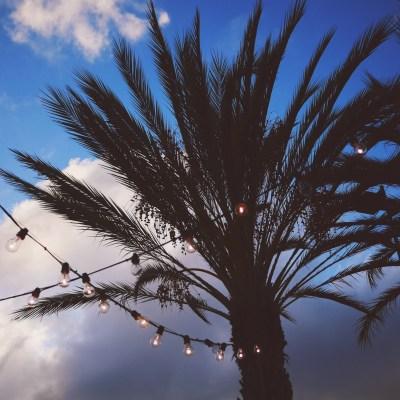 Palm Desert   El Paseo
