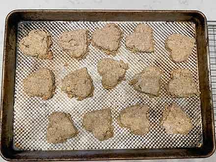 freshly baked oatcakes oven tray