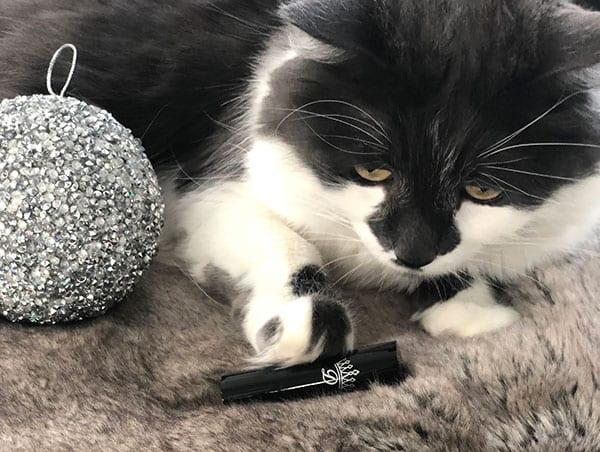 Cat Dawes Cosmetics cruelty-free lipstick