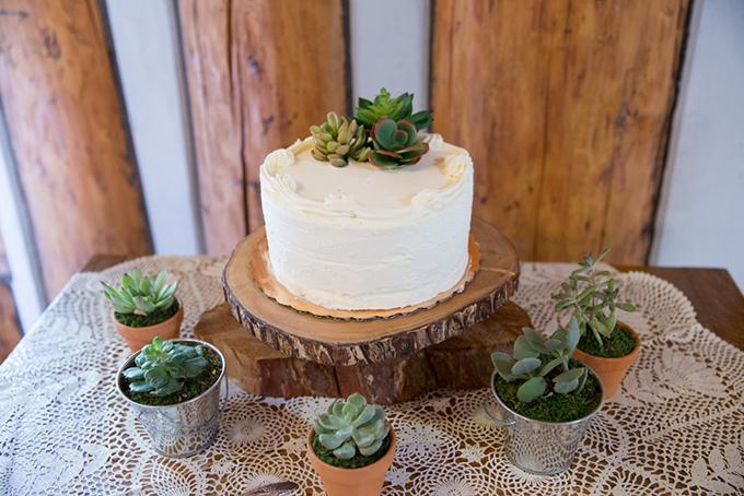 succulent cake | Jasmine Nicole Photography