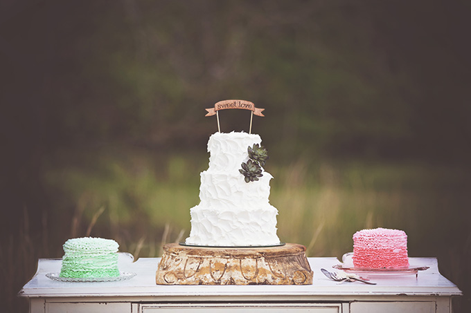 succulent and ombre ruffle cakes   Glamour & Grace