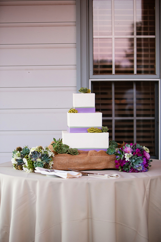 square succulent cake | Orbie Pullen Photography