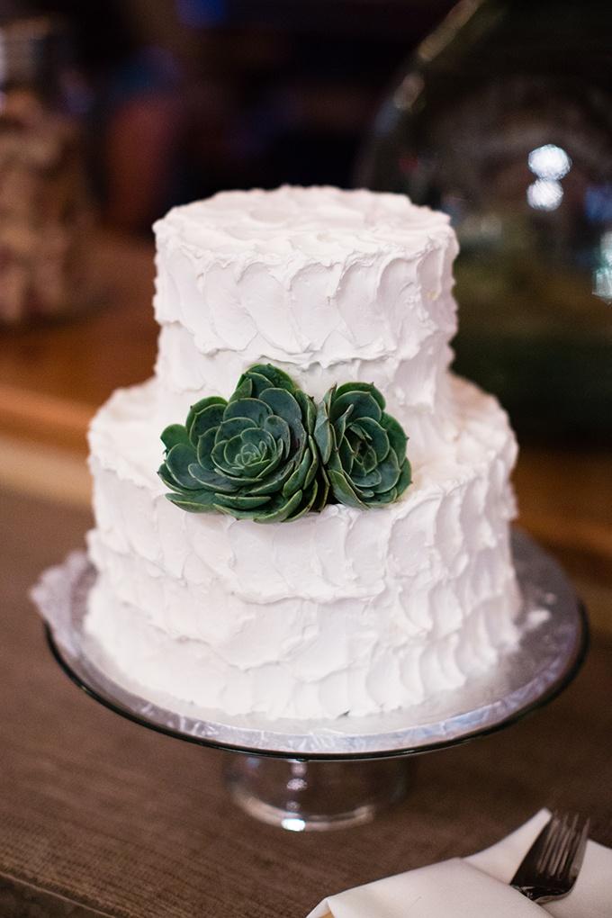 succulent cake by Ettore's | Carmen Salazar | Glamour & Grace