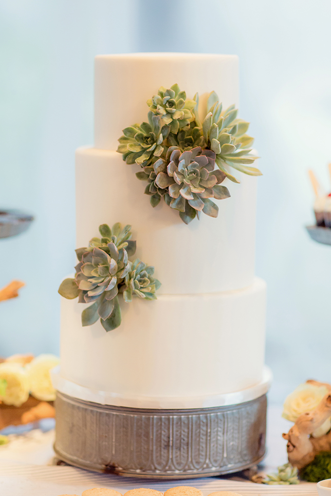 succulent cake | Figlewicz Photography | Glamour & Grace