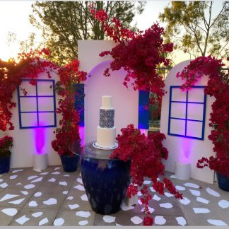 Backdrops and Party Decorations