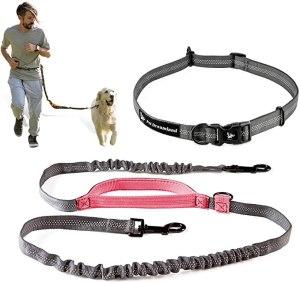 Pet Dreamland Running Dog Leash
