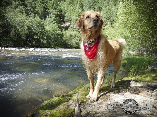 Playing in the San Miguel River, Telluride, CO.