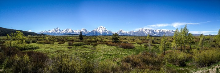 Panoramic view of the Grand Teton NP.