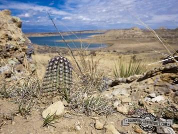 S. Shore Trail, Lake Pueblo SP, Pueblo, CO.
