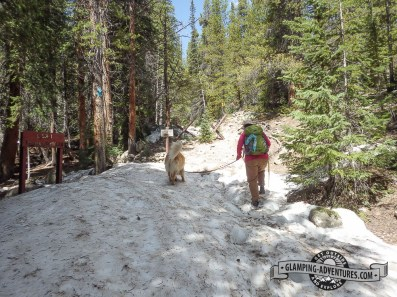 Lots of snow on parts of the trail. Leadville, CO