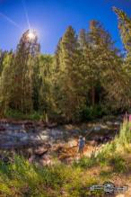 What a beautiful area, Hidden gem, Castle Creek River.
