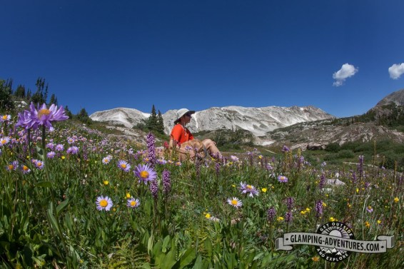 Natasha, taking in the view surrounded by wildflowers. Sugarloaf Rec. Area, WY.
