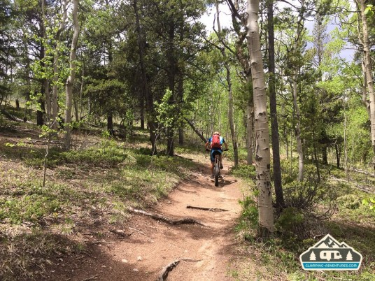 Fat mountain bike taking on the CO Trail. Kenosha Pass, CO.