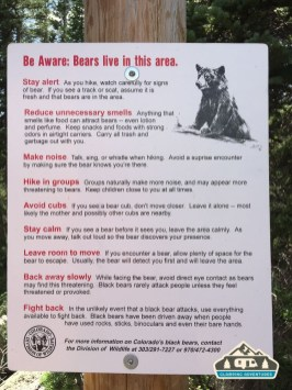 DOW has tips on what to do if you see a bear.