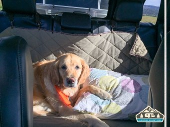 Daisy's bed during our trips.