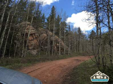 Heading up the narrow roads behind the Manitou Experimental Forest.