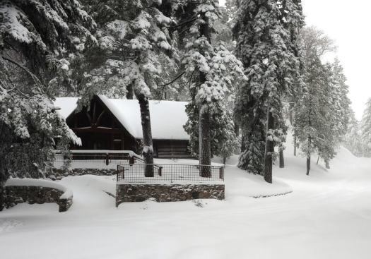 ponderosa winter