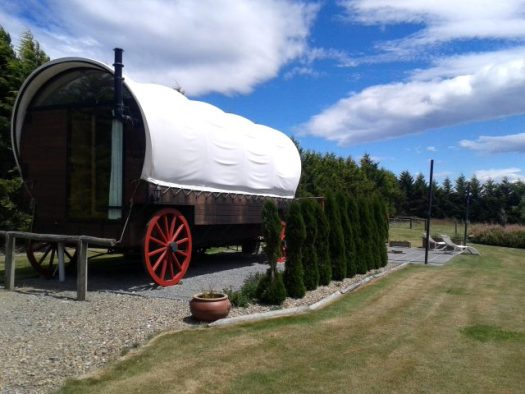 NZ Wagon