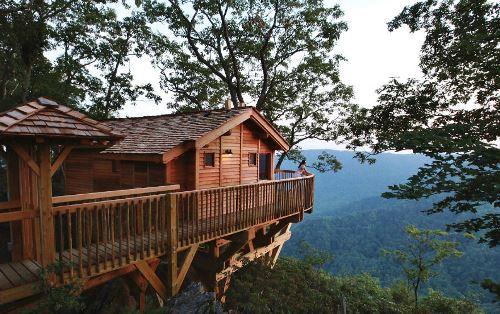 Primland-Tree-House
