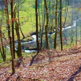 Cabane ruisseau vert au glamping Cabanes de Salagnac à Meyrignac l'Eglise en Limousin
