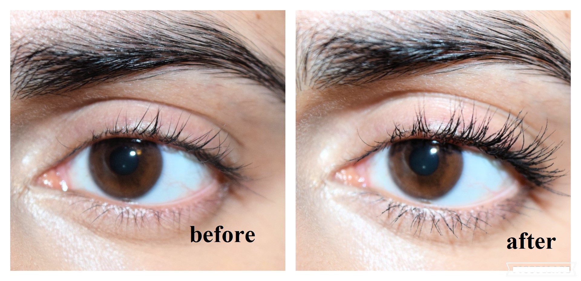 88e65a5f04f Loreal FALSE LASH SCHMETTERLING Mascara on eyes ( Loreal Voluminous Butterfly  Black Mascara before and after pictures )