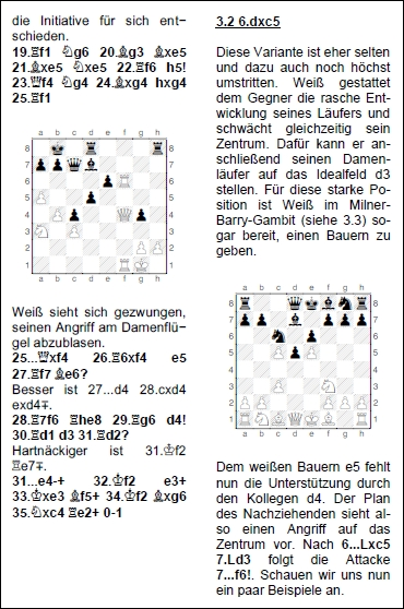 Leseprobe aus Reinhold Rippberger: Gegenspiel - Ein dynamisches Schwarzrepertoire