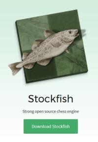 Das Ergebnis einer 30-jährigen Entwicklung in der Schachprogrammierung: Die Freeware-Engine Stockfish