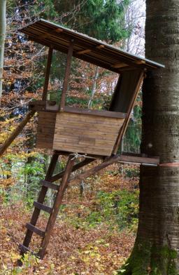 Wald-Jagd-Hochsitz - Glarean Magazin