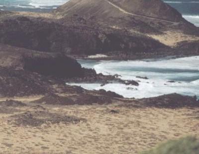 Christa Degen: Isla de Los Lobos (Kurzprosa)
