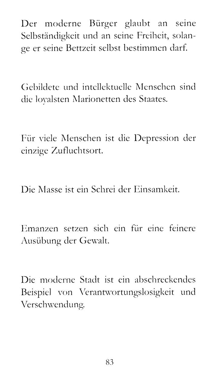 Steiner_Nachtsicht_Probeseite