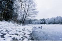 Foersterteiche_im_Winter_00001