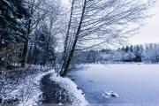 Foersterteiche_im_Winter_00006
