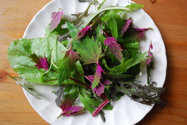 tree spinach on a plate