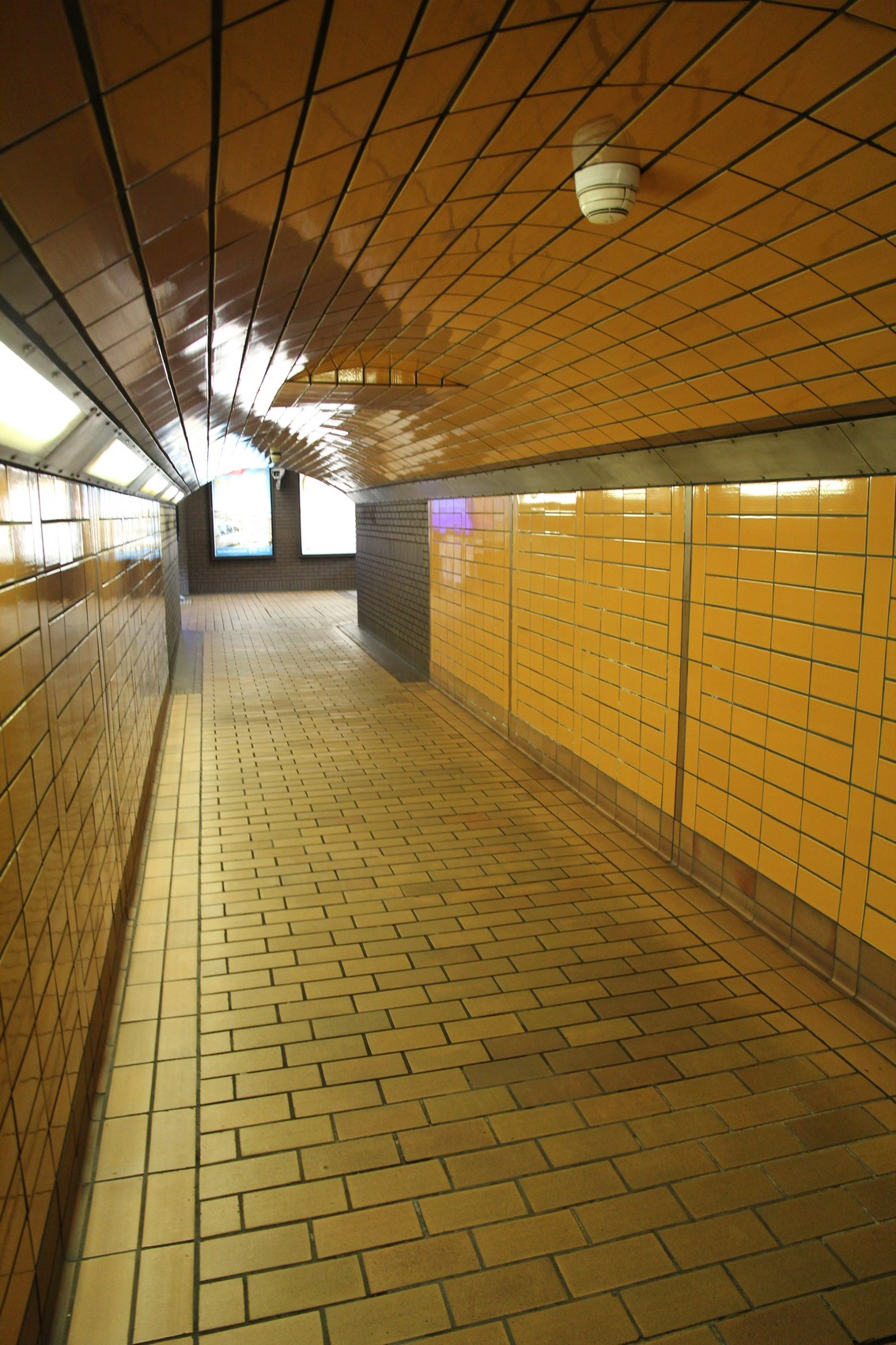 Disabled access on the Glasgow Subway
